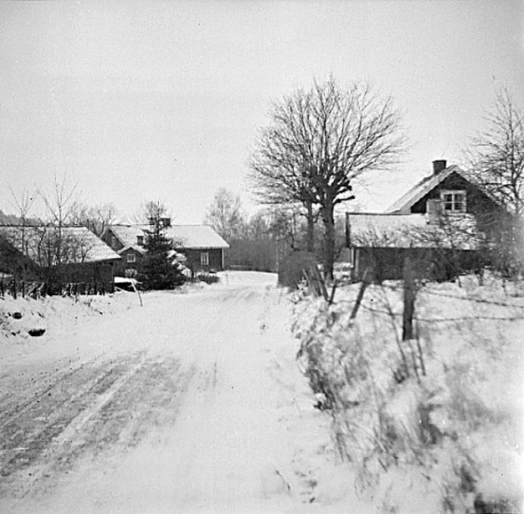 Bild Västergötlands Museum - bildarkivet/bildnummer: D A145127:5