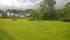 Trädgård med gräsmatt