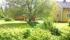 Trädgården från norr