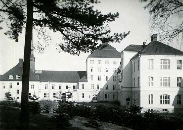 Bild från Birgit Larsson, Skövde, 2016