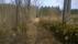 Vägen förbi Lövåsen nordost ut