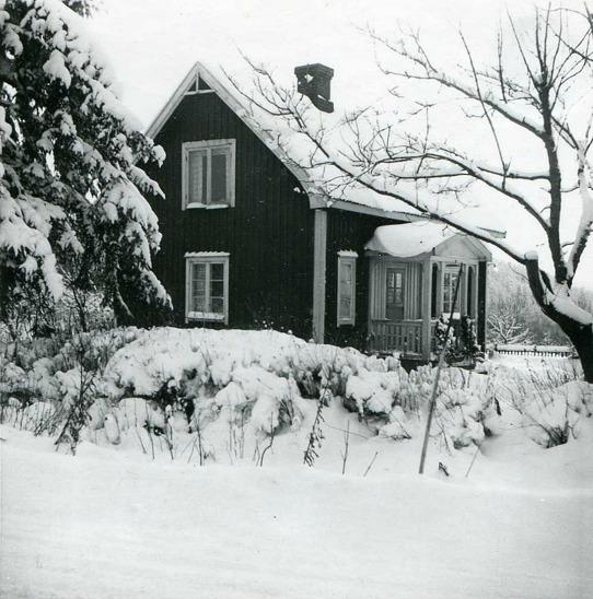 Foto från Gerd Andersson som var dottersonens Gillis maka och bor i Skövde, 2017