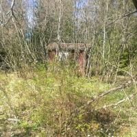 växtligheten tränger sig på - här en *Friggebod'/extrahus
