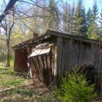 Jordkällarehuset - Idag har myrorna tagit över och byggt stack så stor att uthusdören bågnar! byggnad kopplad till jordkällarehuset.
