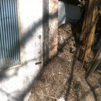 Myrornas kraft - stecken bänder upp dörren