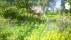 Stugan dyker upp i grönskan