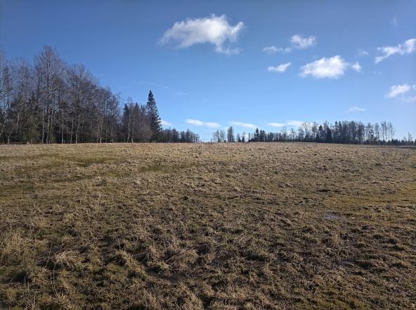 Den gamla gårdsplatsen låg på en ordentlig höjd med öppna ängar