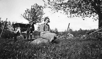 Bertils album 1940-tal