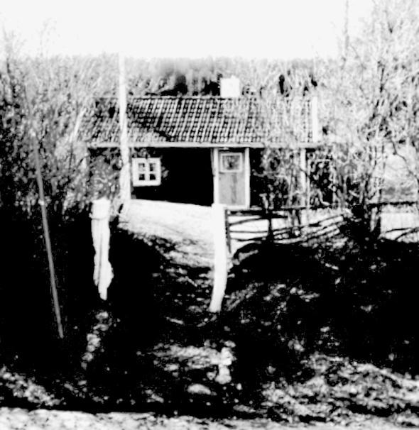 Foto Gunborg Ferm, ur samlingarna Ljungstorp, 2014. Bilden redigerad från gammal färgbild, KF.