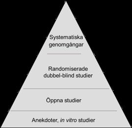 Evidenshierarki