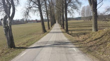 Vägen Framåt