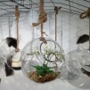Glasklot liten 15,5 cm med tjockt rep