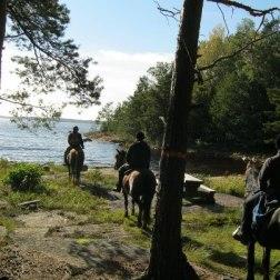 Bredviken, Jäverön Foto Sia Elinn