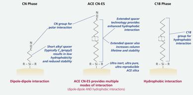 ACE CN-ES