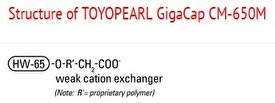 Structure of Toyopearl GigaCap CM-650M