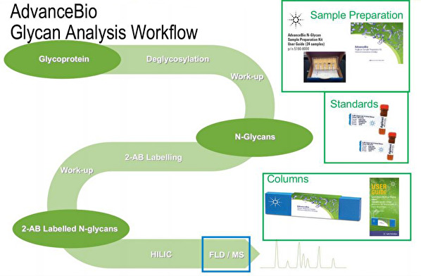 AdvanceBio Glycan Analysis Workflow