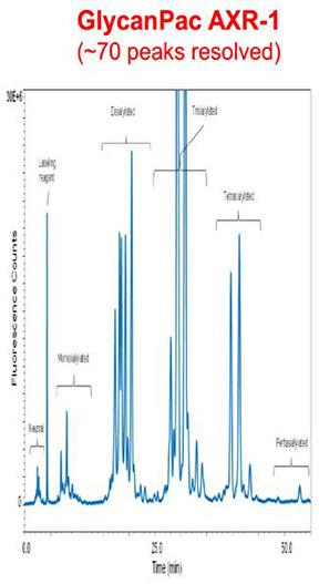 Thermo Scientific GlycanPac AXR-1