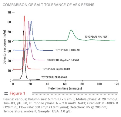 Comparison of salt tolerance of anion exchange resins