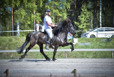 Vaena från Boänge 6 år e: Godi