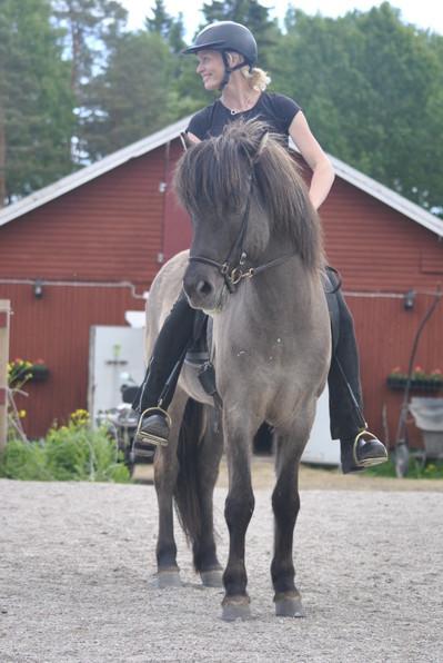Safir från Lilla Ånebo 8 år e: Godi