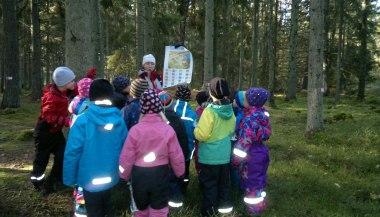 Bilden visar en lärorik stund i skogen med barn, och ledare som övar kartkunskap.