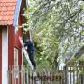 Vi målar också om ditt hus : ock reparerar samtidigt skådor