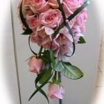 Rosa lyx