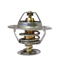 Termostat Bm 800-2654 V2005-2105. REF: 7466016