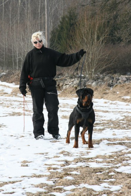 Jag och Kato spårar 2010