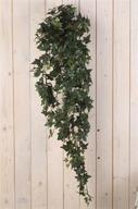 Hängande Murgröna 120cm
