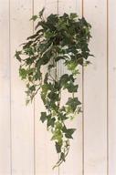 Konstväxt Hängande Murgröna L 74cm