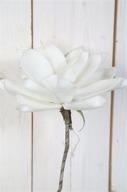 Vit Magnolia på kvist 25cm