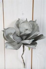 Grå Magnolia på kvist 25cm - Grå Magnolia