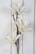 Vit Lotus på kvist Konstväxt