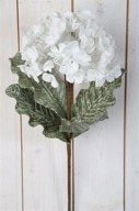 Vit Hortensia på kvist Konstväxt