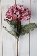 Rosa Hortensia på kvist Konstväxt