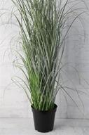 Gräs i kruka H96cm