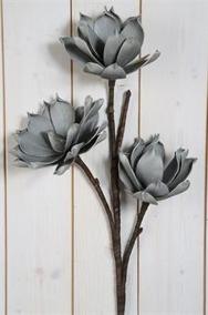 Grå Lotus på kvist Konstväxt - Grå Lotus