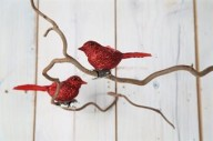 Fågel med klämma