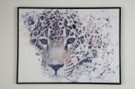 Tavla gepard 60x80cm