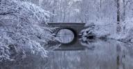 Poster Vinter Natur 40x50cm