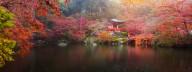 Poster Asiatisk Natur 40x50cm