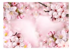 Fototapet - Spring Cherry Blossom - B150xH105cm