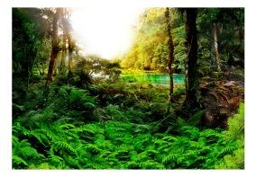 Fototapet - In tropics - B150xH105cm