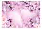 Fototapet - Say Hello to Spring - B400xH280cm