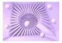 Fototapet - Lavender maze - 400x280cm