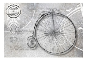 Fototapet - Vintage bicycles - black and white - 150x105cm