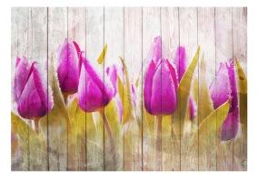 FFototapet - Autumn tulips - 150x105cm