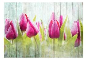 Fototapet - Tulips on white wood - 150x105cm