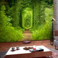 Fototapet - Green shrubbery